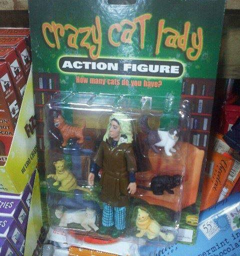 Crazy Cat Lady action figure… | ZanyJaney.com